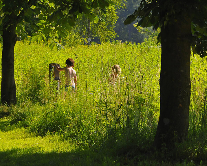 natuurcamping-geschikt-voor-kinderen